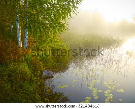 Landscape with birch, lake and green grass in morning lights. Finland - stock photo