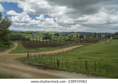 Landscape with farms. New Zealand - stock photo