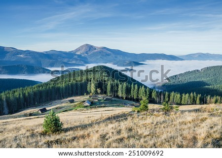 Landscape with forest in mountain and beautiful sky - stock photo