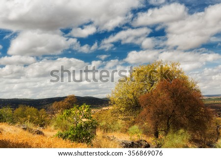 Landscape with glamor, near Nogales. Spain.
