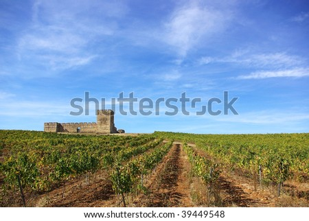 Landscape with grapevines and an old castle. - stock photo