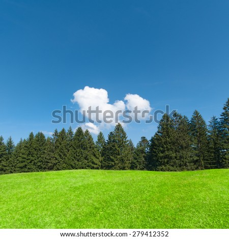 Landscape with green meadow and fir trees under blue sky, summer resort - stock photo