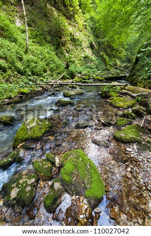 Landscape with lush forest and a river flowing through mossy boulders - stock photo