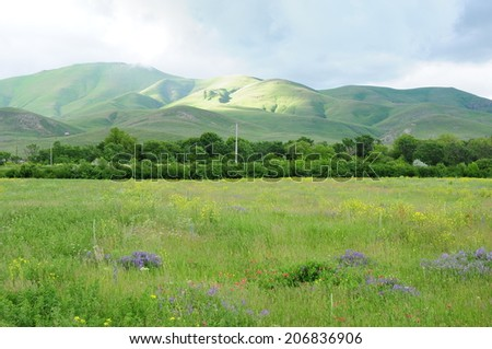 Landscape with meadow and green mountains - stock photo