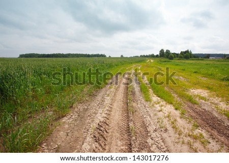 Landscape with road, field and tree