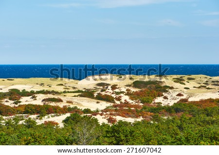 Landscape with sand dunes at Cape Cod, Massachusetts, USA.  - stock photo
