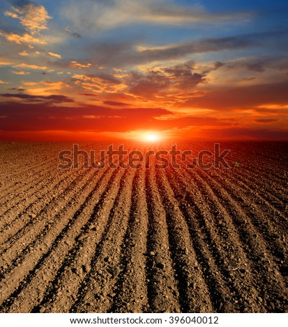 landscape with sunset over agricultural plugged field - stock photo