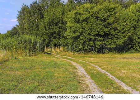 Landscape with the dirt road and woods - stock photo