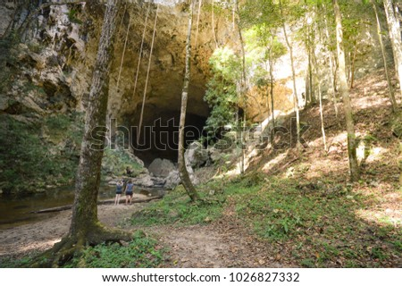 Landscape with the Rio Frio Cave in the remote and hard to reach Mountain Pine Ridge Forest Reserve in Belize. Central America