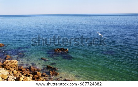 landscape with transparent waters at Natural Park of Arrabida, Setubal, Portugal