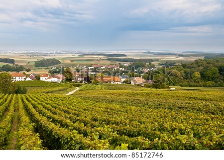 Landscape with vineyards and mid-country village - stock photo