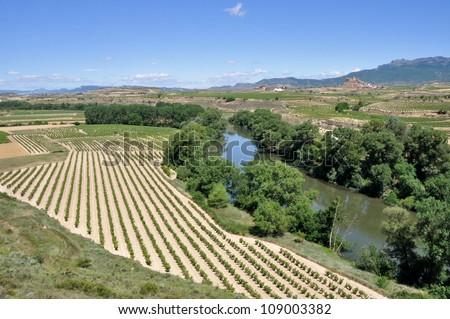 Landscape with vineyards at La Rioja, Spain - stock photo