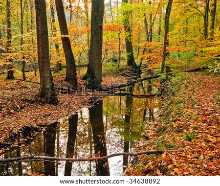 Landscape with wooden river in autumn forest - stock photo