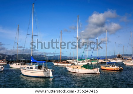 landscape with yachts - destination Wellington, North Island, New Zealand