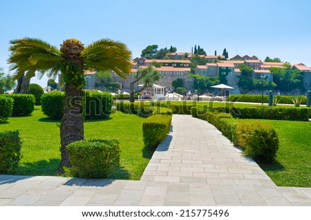 Landscaped garden with tiny bushes and palms, Montenegro. - stock photo