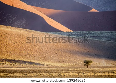 Landscapes of Namibia. High red dunes, sand of unusual shades, desert open spaces, boundless savannas. Beauty and rich nature of the African continent. - stock photo