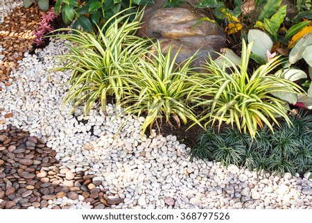 Landscaping combinations of plant, green grass and stone for background and design with copy space for text or image. - stock photo