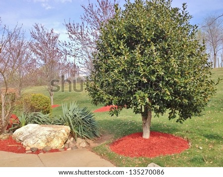 Landscaping Design Background ,and Red Mulch - stock photo