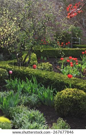 Landscaping in spring green garden - stock photo