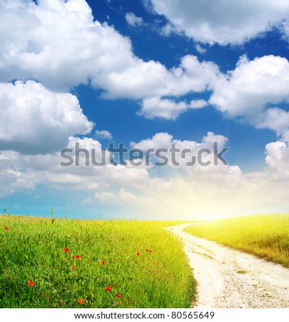 Lane in green meadow. Nature composition. - stock photo