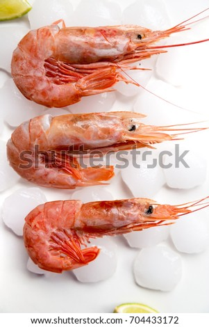 Langoustines, large pink Argentinian prawns on ice