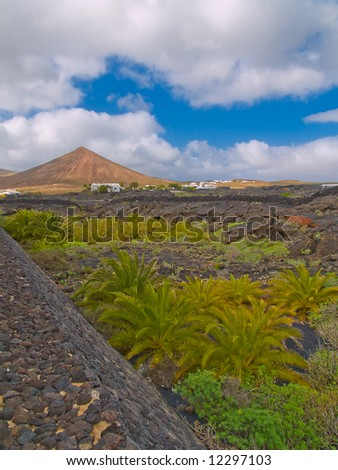 Lanscape of volcanic island, Lanzarote, Canary island