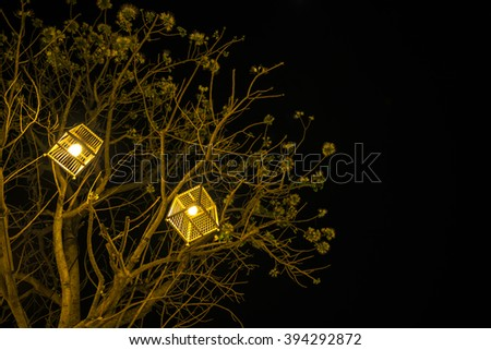 Lanterns hanging from tree to decorate - Made of wicker from bamboo :bird cage lamp - stock photo