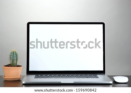 Laptop and cactus in flowerpot on wooden table on grey background - stock photo