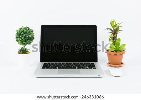 Laptop and flower pot isolate on white background - stock photo