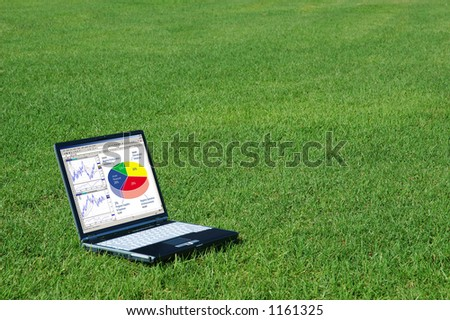 Laptop with Charts in the Grass - stock photo