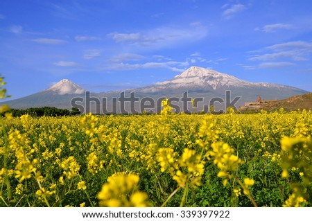 Large and small Ararat in Armenia. Sacred Khor Virap Monastery on a slope in the flowers - stock photo