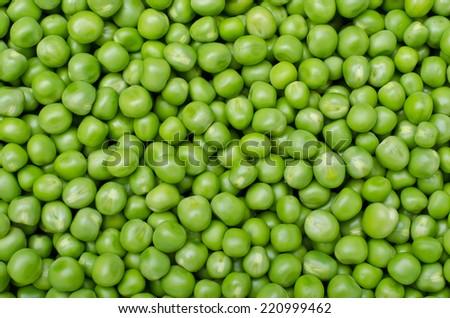 Large background of fresh green peas - stock photo