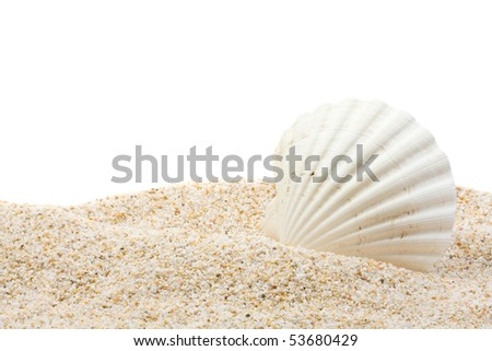 Large beautiful sea shell with sand on white background - stock photo