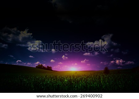 Large beautiful spring the field with a distant kind on a forest in night and bright moon on sky - stock photo
