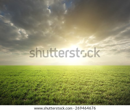 Large beautiful spring the field with  dark sky
