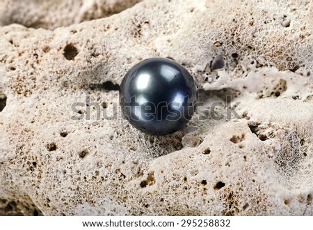 Large black Tahitian pearl on white coral.