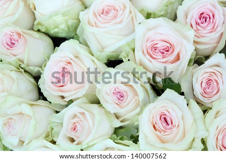 Large bright bouquet of freshly cut big beautiful white roses. - stock photo