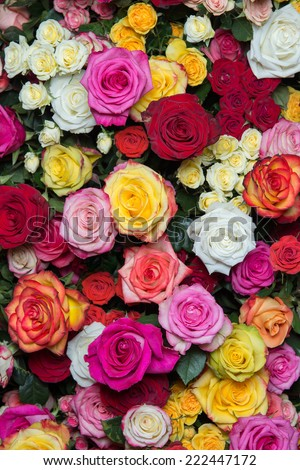 Large bright bouquet of multicolored roses - stock photo