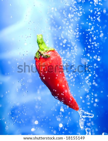 Large Chilli pepper water splash - stock photo
