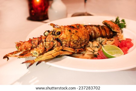 Large cooked lobster on plate