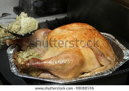 large cooked Thanksgiving or Christmas turkey browned with stuffing - stock photo