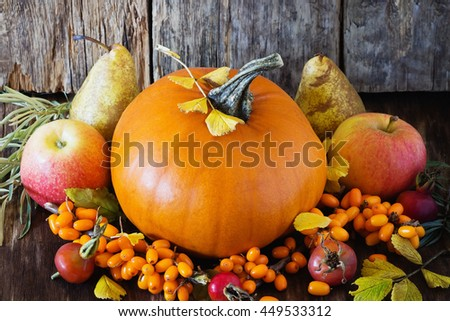 Large delicious pumpkin and different fresh fruit on wooden background. Bio healthy food. Organic vegetables.  Rustic style. Selective focus - stock photo