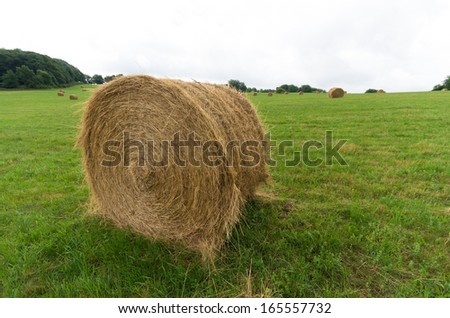 large hay rolls in a meadow in germany - stock photo