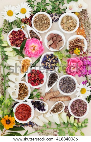 Large herb and flower selection used in traditional herbal medicine loose and  in porcelain bowls over cream background. - stock photo
