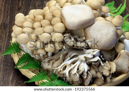 Large mushrooms mixed with small mushrooms in a wicker basket. - stock photo