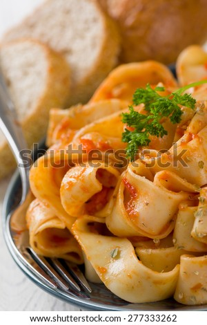 Large Pasta Noodles with Bolognese Marinara Sauce - stock photo
