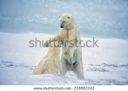 Large polar bear in dominance display - stock photo