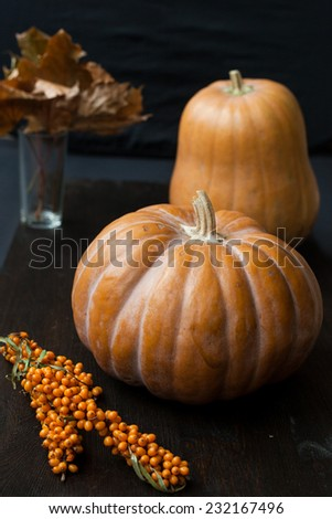 Large pumpkins on a dark wooden table  - stock photo