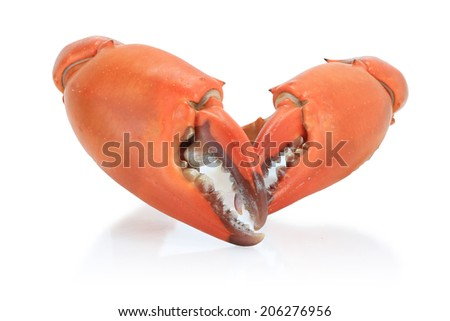 Large steamed crab cooked in red, orange and white on a white background. This has clipping path.  - stock photo
