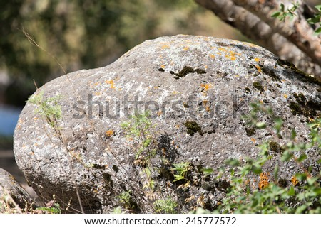 large stone in nature - stock photo